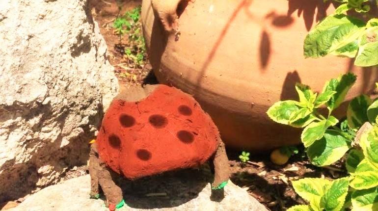 בואו לפסל חיפושיות מאדמה בחופשת הפסח!