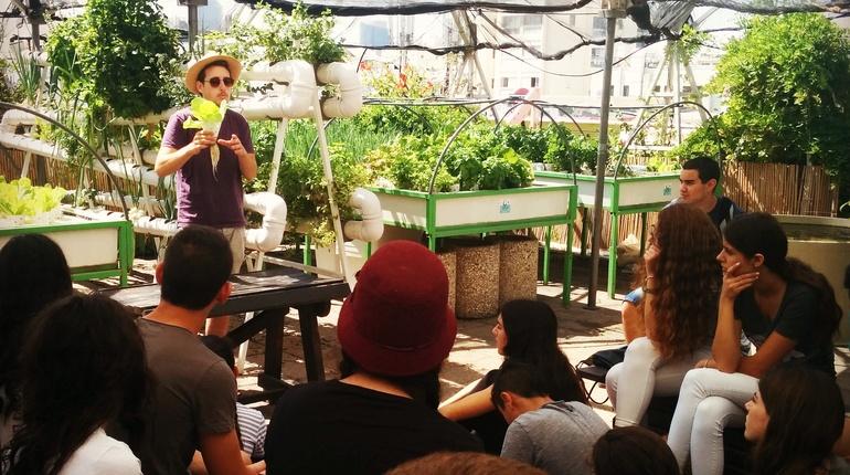 ללמוד לגדל בבית ירקות ללא אדמה! על גג דיזנגוף סנטר