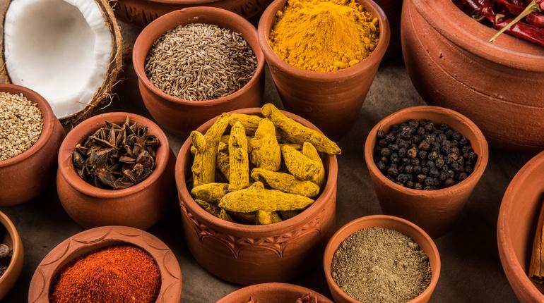 טעימה מהודו - ארוחה הודית צמחונית מיוחדת עם איריס