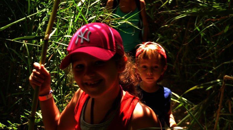 נוף ירוק, פריחה צבעונית ונחל שלף - טיול משפחות קסום!
