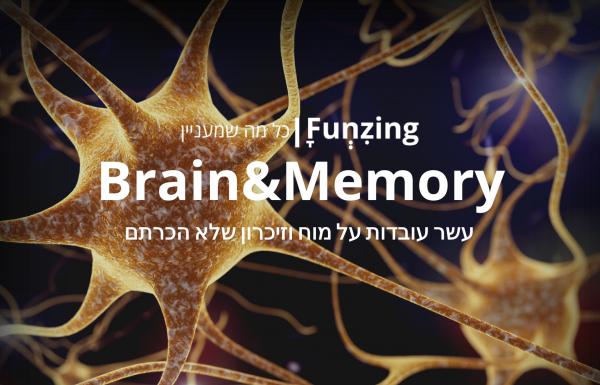 עשר עובדות שלא ידעתם על המוח ועל הזיכרון שלנו