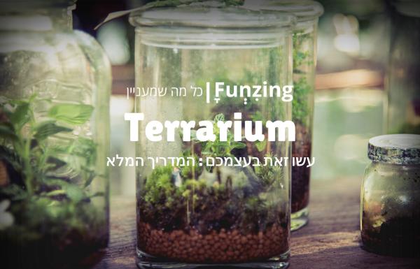 עשו זאת בעצמכם: כך תכינו טרריום בקלי קלות